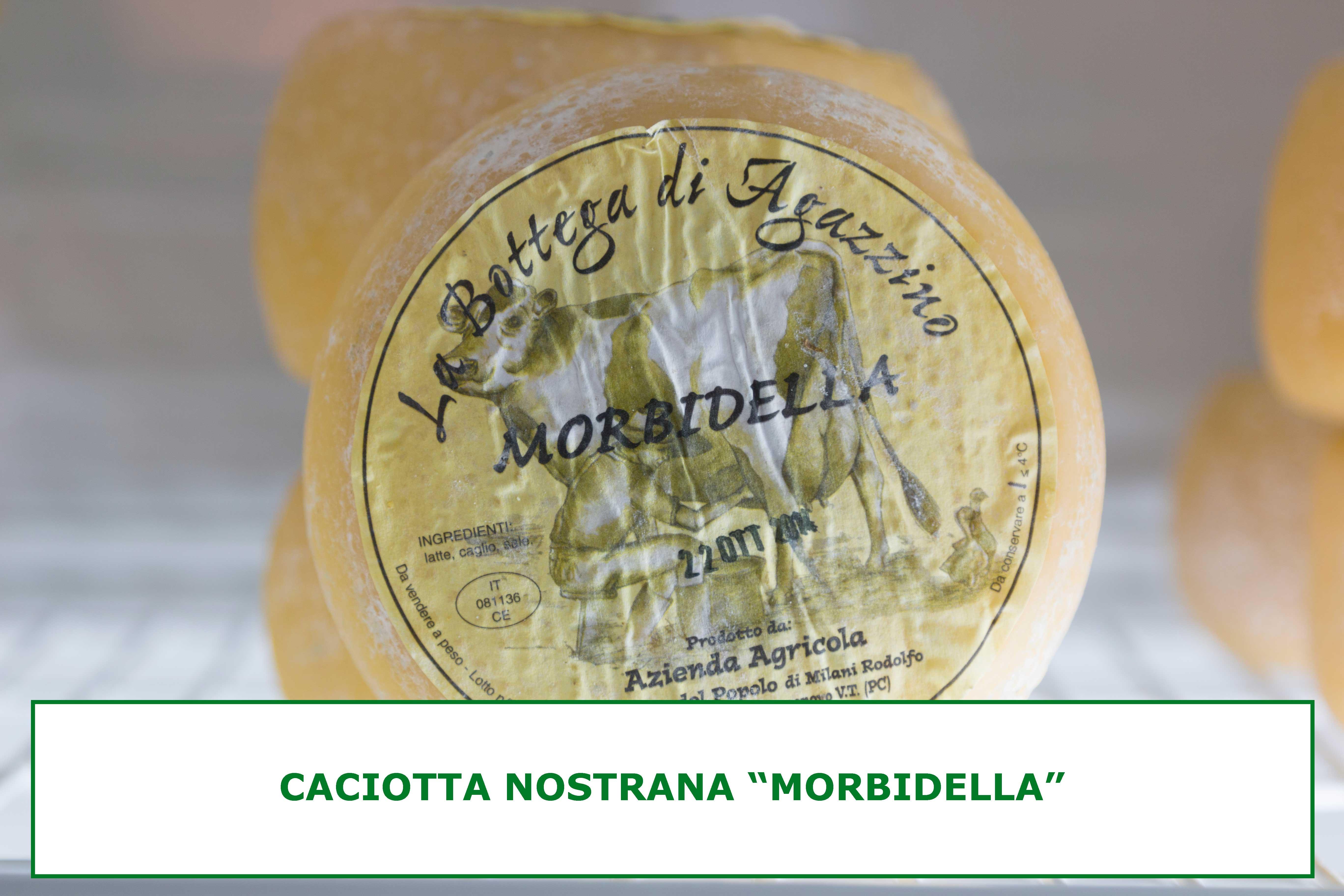 CACIOTTA-MORBIDELLA