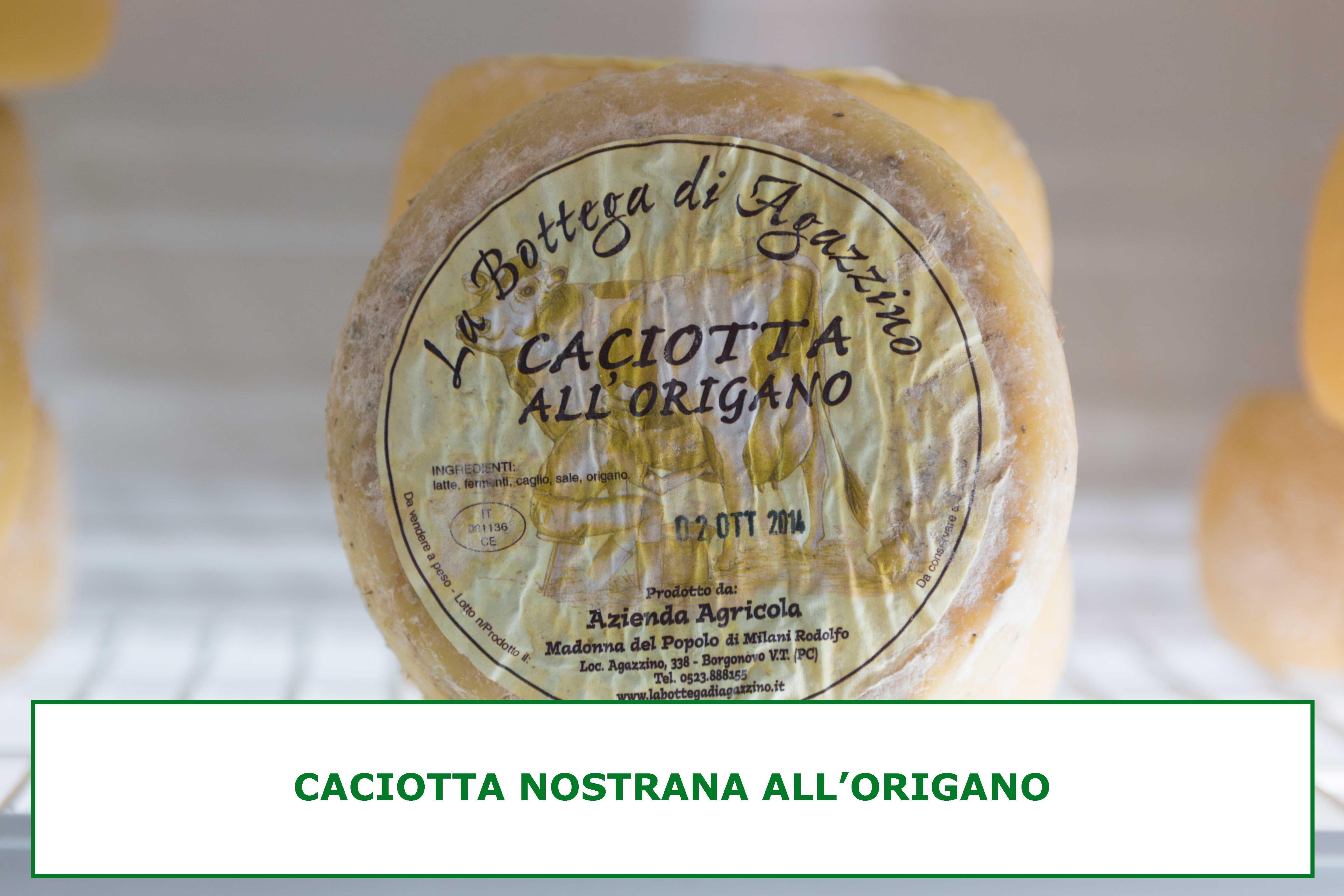 CACIOTTA-ORIGANO