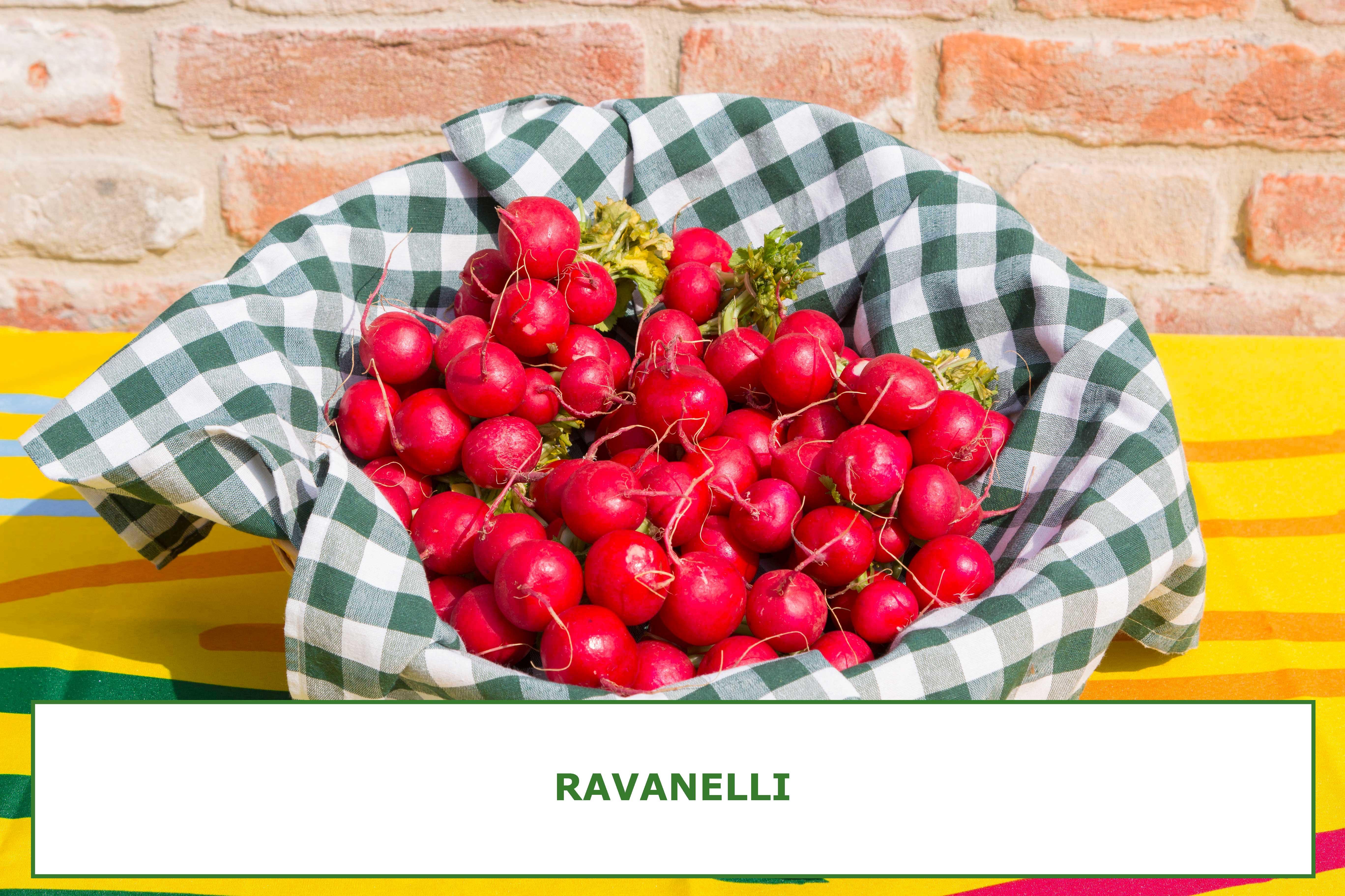 RAVANELLI